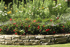 Landscaping, Lawn Care and Snowplowing